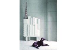 Книжный шкаф Rascacielos